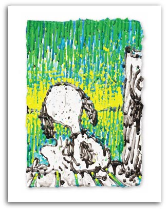 Coconut Couture  by Tom Everhart